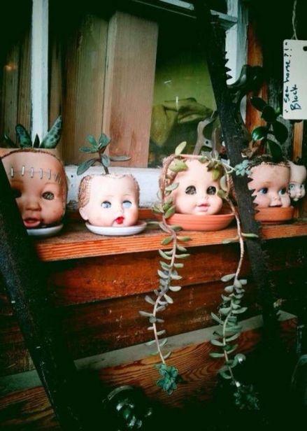 dollheadplants